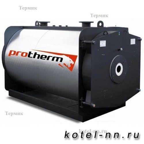 Промышленный газовый котел Бизон NО 3000